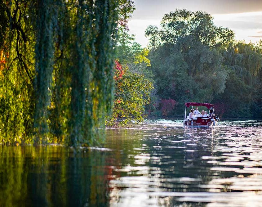 Rent one of our electric and license free boat to enjoy the nature around Strasbourg