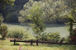 The Marne: a country setting from the Restaurant Le Canotier
