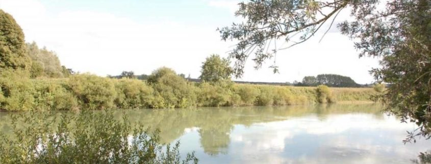 The Marne, a green bower to discover by boat